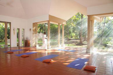 Shreyas Yoga & Ayurveda Retreat India