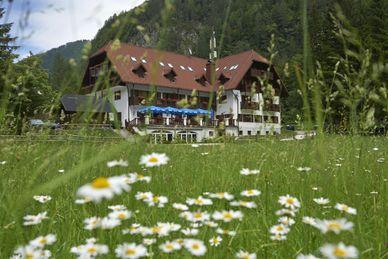 Hotel Plesnik Slovenië